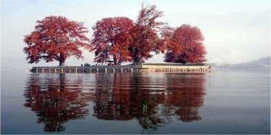 char-chinar dal lake admirable india